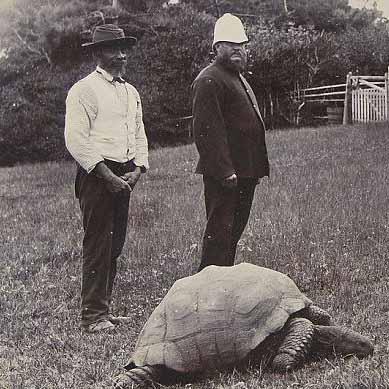 成为世界最古老的动物