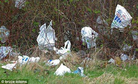 夏威夷海滩到英国海岸 塑料垃圾遍布各地海洋