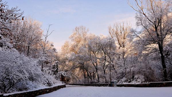 银装素裹 金山岭长城勾魂雪景高清图片