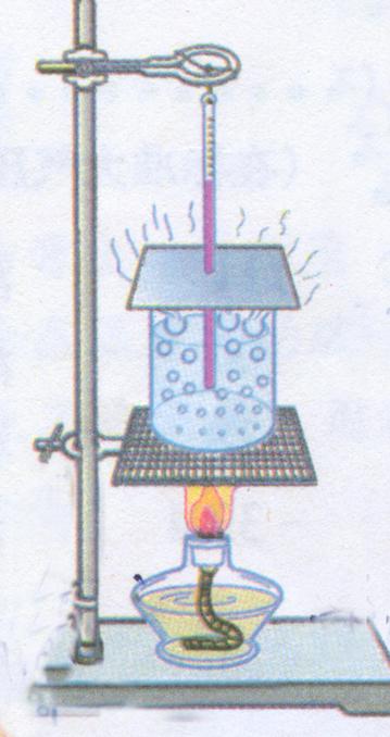 用酒精灯给水加热并观察.