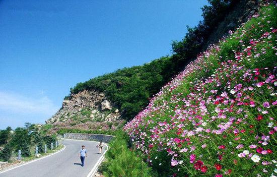 百花山风景区位于北京市房山区史家营乡莲花庵,距市区89公里,乘车走