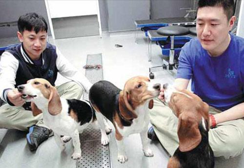 """中国动物实验或将实行""""3r原则"""""""