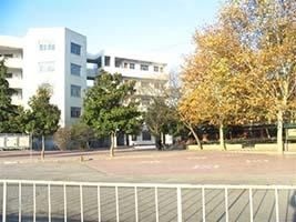 6月5日带您走进河南省新野县第三高级中学-中冬令营中苏高图片