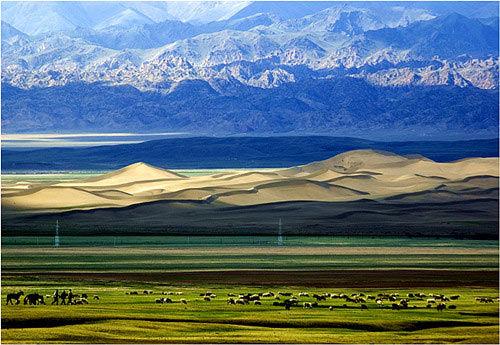 草原上毡房棋布,牛羊遍野,明镜般的巴里坤湖,静静地躺在绿绒绒的大