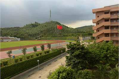 广东省深圳市龙城高级中学图片