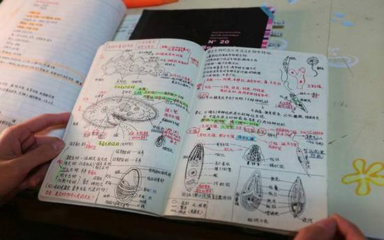 学姐的笔记太美了,跟艺术品一样。建筑工程学院大三学生刘思遥羡慕不已。网友无物结同心留言说,我大学要能做成如此笔记,就可以体验一把学霸的滋味了。 对于意外走红,范琴表示是偶然。最近忙于准备研究生考试的范琴,在复习《植物学》时被一道 综述题难住了,一时理不清思路的她翻找出了大一时记录的该课程笔记,问题迎刃而解。范琴在朋友圈发了条动态感慨大学笔记的重要性后,引得学弟学妹们纷 纷上门向范琴求笔记。网友名字的记忆惊叹插图太美,作为艺术生,太羞愧!请收下我的膝盖。
