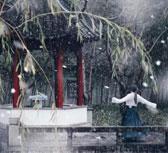 上海交大初雪 校园成冰雪童话世界