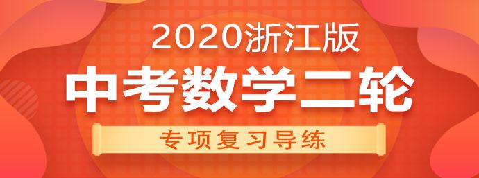 (浙教版)2020中考数学二轮专项复习导练