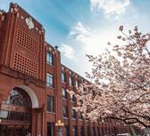 春分时节 带你领略全国27所高校的满园春