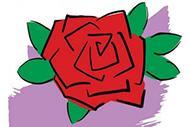 数学神探之6:十三朵玫瑰