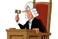 数学神探7:聪明的法官