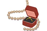 数学神探9:珠宝被窃