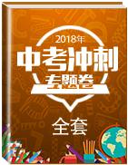 2018年中考冲刺专题卷